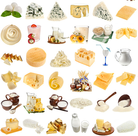 collection set of dairy milk produce, cheese,curd, cottage close up isolated on white background photo