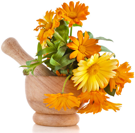 botanical remedy: herbal flower of calendula Officinalis in wooden mortar Isolated on white background