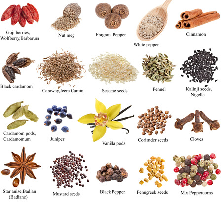 spices and herbs: Collection set of heap spices with names close up isolated on white background