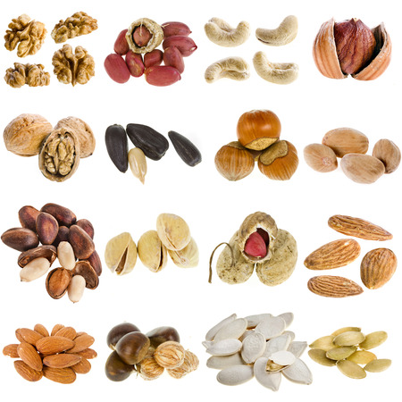 large collection of nuts, seeds isolated on a white background photo