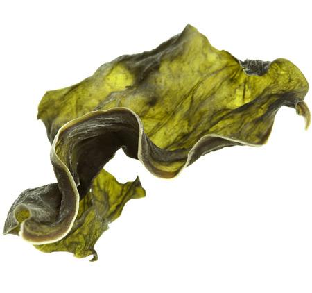 getrockneter Seetang Kelp Scheibe Nahaufnahme Makro isoliert auf weißem Hintergrund
