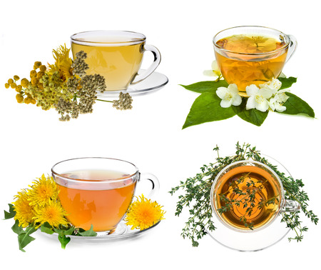 Collection set of cup of herbal tea and fresh herb isolated on white background photo