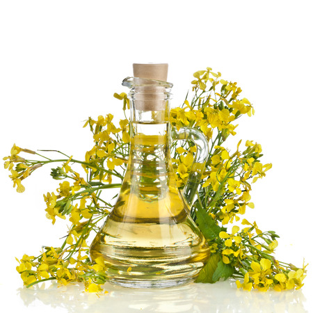 oilseed rape: rape mustard bottle decanter oil, with blossoms herb, close up isolated on white background