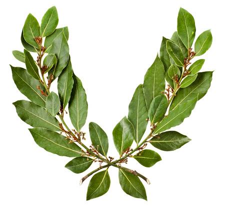 Laurel wreath isolated on white background photo