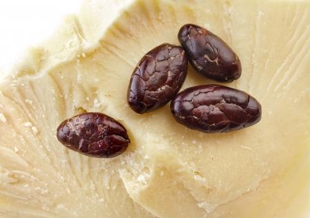 beurre de cacao et les fèves de cacao vue de dessus surface de près macro shot sur fond blanc