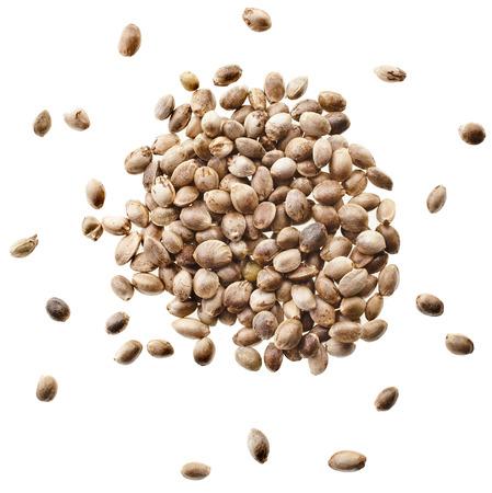 hemp hemp seed: Cannabis Hemp seeds close up macro shot isolated on white background Stock Photo