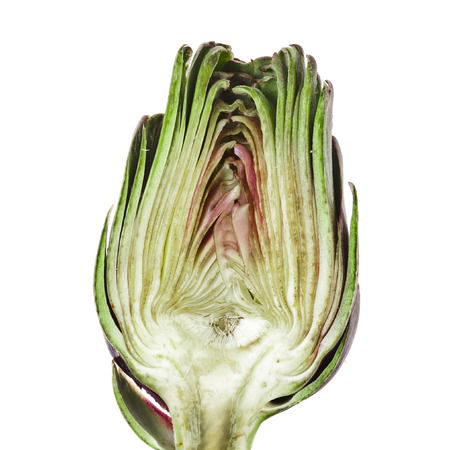 thistle plant: Half fresh artichoke isolated on a white background