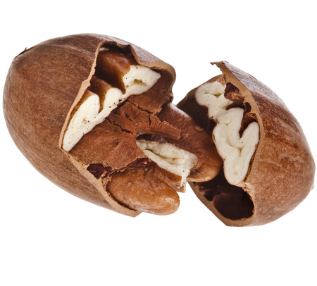 how to crack pecans without a nutcracker tale