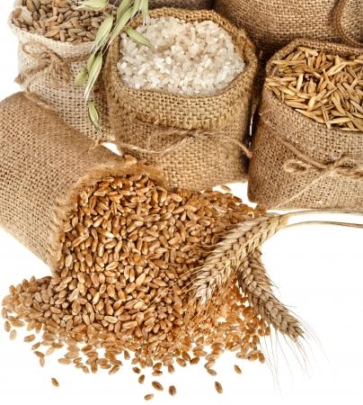 grañones y harina de semilla de granos en bolsas cerca aisladas sobre un fondo blanco
