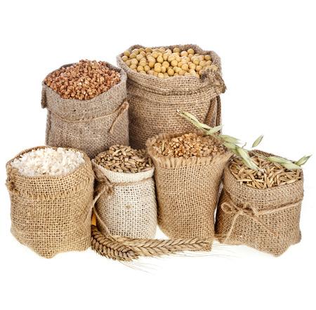 Conjunto de la colección de la harina de semillas y granos en bolsas aisladas sobre un fondo blanco