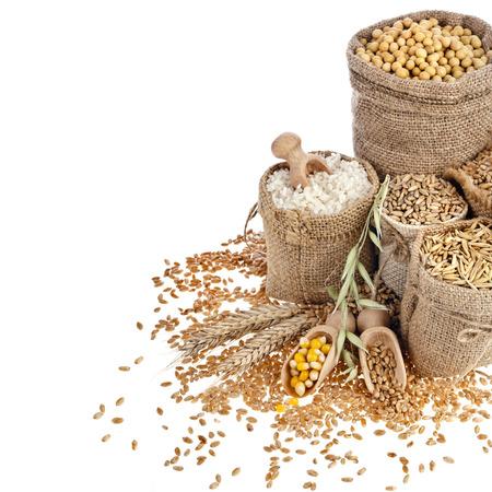 Border Rahmen von Mais-Kernel Samenmehl und Getreide in Säcken auf einem weißen Hintergrund Lizenzfreie Bilder