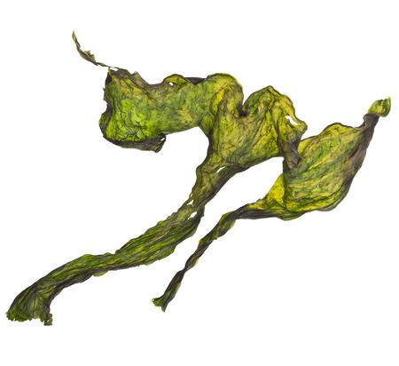 alga marina: conjunto de algas algas secas cerca aislados en blanco