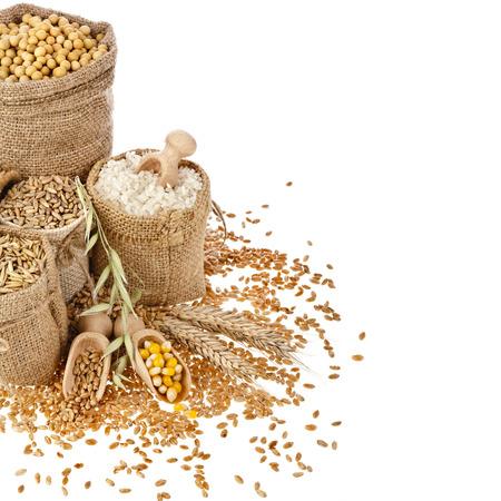 Frontiera cornice di mais kernel farina di semi e granaglie in sacchi isolati su uno sfondo bianco Archivio Fotografico - 24774546