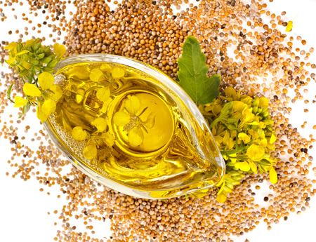 mustard plant: Flower Oil in gravy boat and mustard plant flowering isolated on white background