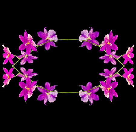 Border frame of Orchid Cambria Burrageara isolated on black background photo