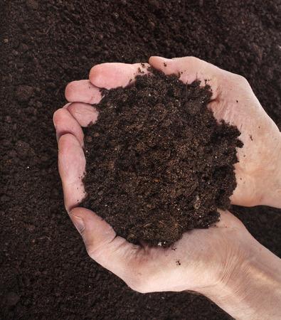 손 토양 표면 위쪽 볼을 잡고 스톡 콘텐츠