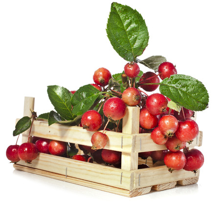 rennet: Apple fruits heap in wooden box crate Isolated on a white background