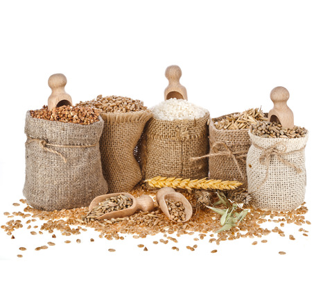 Corn kernel seed meal and grains in bags with wooden scoop isolated on a white background Stockfoto