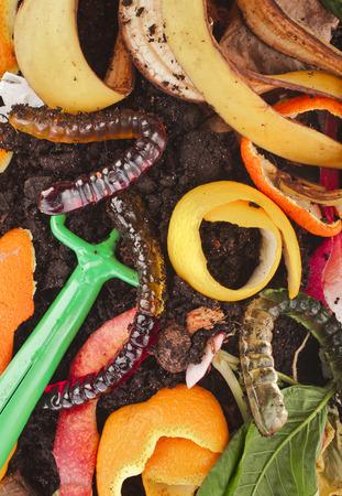 hayfork: kitchen scraps in compost soil pile surface Stock Photo