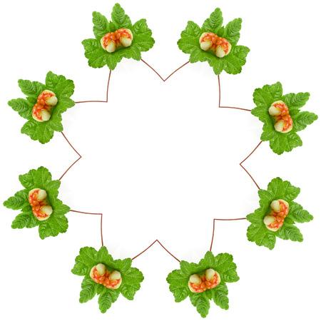 chicout�: D�cor R�sum� des frais chicout� Rubus chamaemorus isol� sur blanc Banque d'images