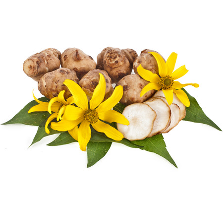 Jerusalem artichoke with flower and leaves stem isolated on a white background