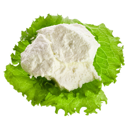 Ricotta Cheese with lettuce leaves isolated on white background Stock Photo