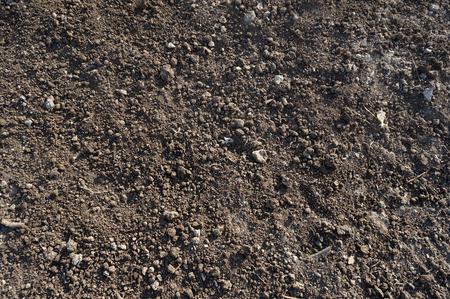 suelo arenoso: Primer plano de fondo de la superficie de suelo orgánico Foto de archivo