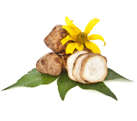 jhy: Jerusalem artichoke with flower and leaves stem isolated on a white background