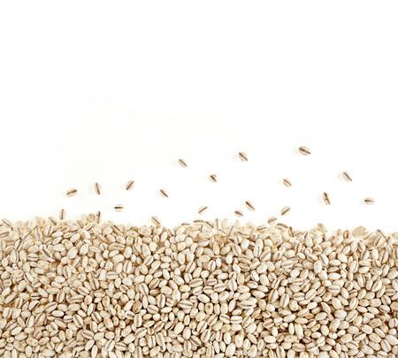 pearl barley: Border of Pearl Barley Surface Texture Background