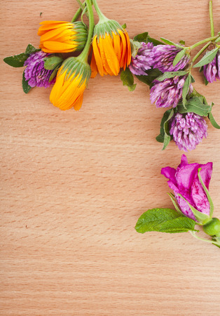 herbal flower groups on wooden rustic surface top view with copy space background photo