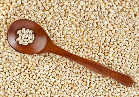 pearl barley with wooden spoon close up surface top view background photo