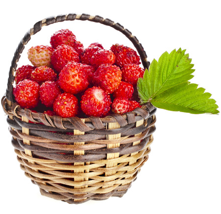 Wild Strawberries close up in wicker basket close up isolated over white background photo