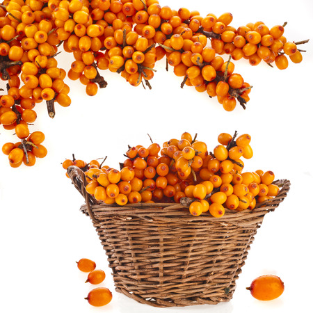 buckthorn: wicker basket full sea buckthorn berries isolated on white background