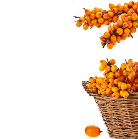 buckthorn: border of wicker basket full sea buckthorn berries isolated on white background