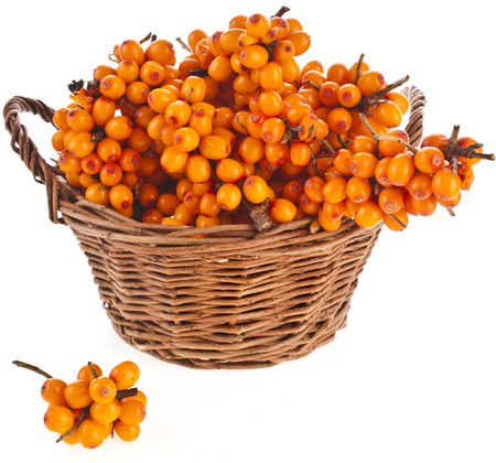 wicker basket full sea buckthorn berries isolated on white background photo
