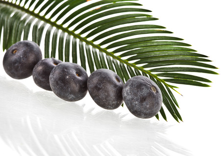 acai: palm leaves with fresh fruits isolated on white background.