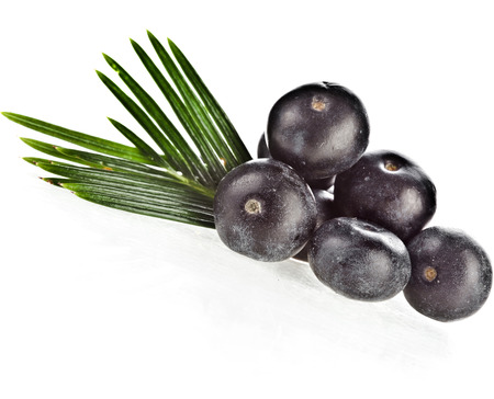 acai: fresh fruits with palm leaves isolated on white background