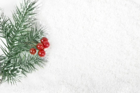 Christmas border frame with snow tree and red berries on snowy surface