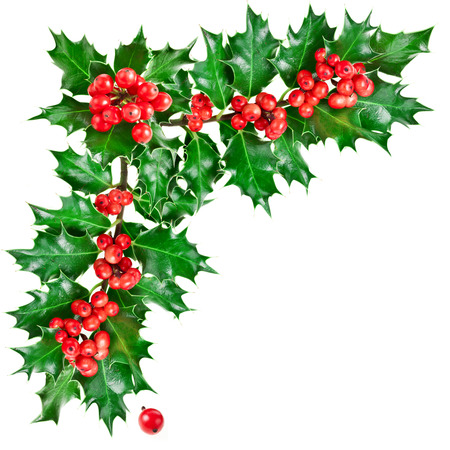 Decorative corner with Christmas holly with berries.