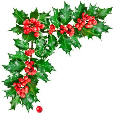 bordes decorativos: Esquina decorativa con la Navidad acebo con las bayas.