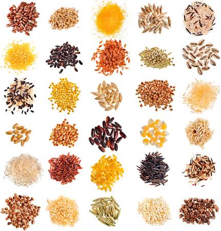 cereal: Colección Conjunto de granos de cereales y semillas montones, centeno, trigo, cebada, avena, maíz, lino, mijo, arroz, trigo sarraceno, quinoa primer aislado en el fondo blanco
