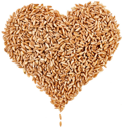 Shape Heart of Spelt Grains Close up top view surface isolated on pure white background