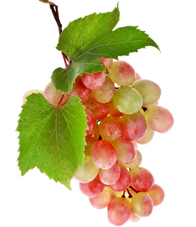 bunch of: bunch of ripe grapes and green leaves closeup on white background Stock Photo