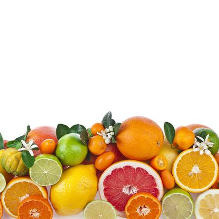 CITRICOS: Frontera de frutas cítricas aislado sobre fondo blanco