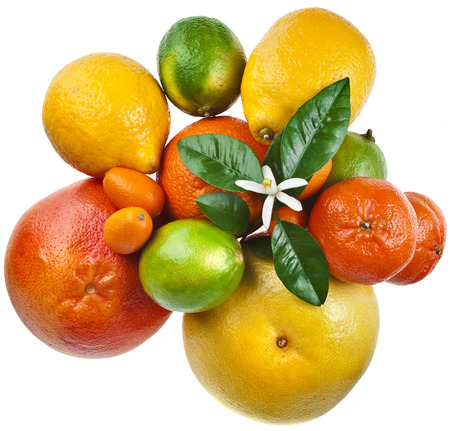 citrus: citrus fruits mix top view isolated on white background