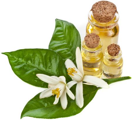CITRICOS: El aceite esencial de hierbas en botellas con flores frescas de cítricos aislados en blanco Foto de archivo