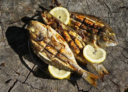 Seabass and Dorado fish grilled Stockfoto