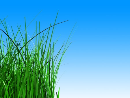 3d illustration of green grass over sky gradient background Stock Illustration - 7022249