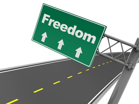 3d illustration of road sign with text freedom, over white background illustration