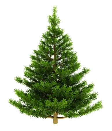 undecorated: 3d illustration of christmas tree isolated over white background Stock Photo